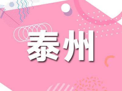 """江苏兴化:加强文物保护 打造""""文化名片"""""""