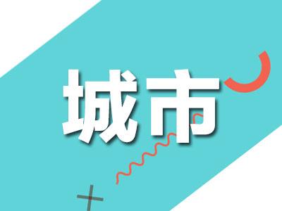 南京江北50多棵杨树惨遭环切 被立为刑事案件