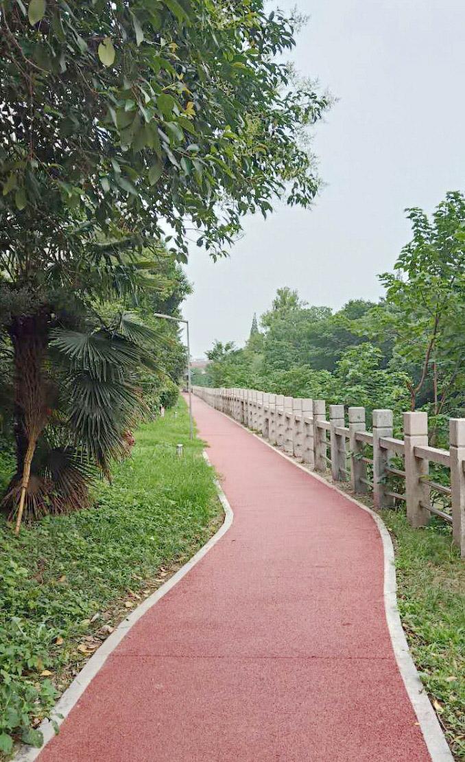 鸿泰家园建健身跑道 昔日坑洼路 如今健步飞