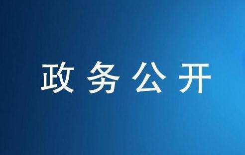 夏心旻:落实惠企政策优化营商环境 激发市场主体活力