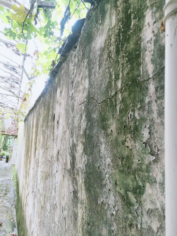 """小实惠巷""""无主围墙""""变危墙,究竟谁来修?"""