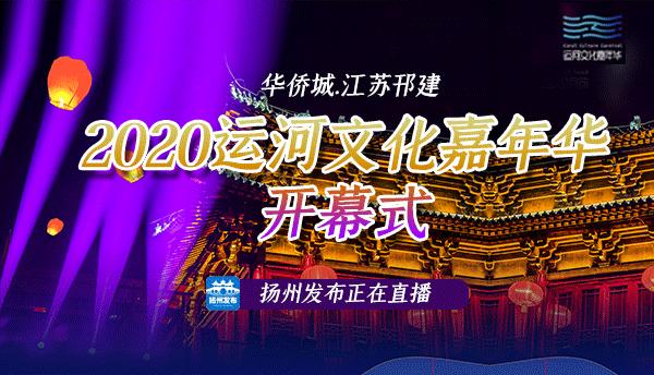 2020运河文化嘉年华开幕式