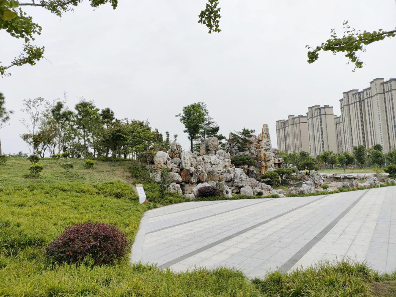 七里河公园环境美 市民建议增设一些健身设施