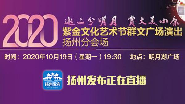 2020紫金文化艺术节群文广场扬州分会场演出
