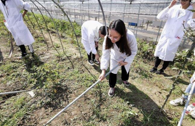 """扬州大学土壤医生 实地""""问诊"""" 为民服务解难题"""