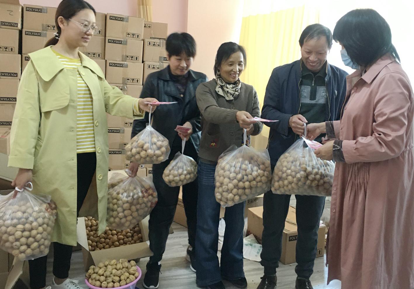 抢购新疆核桃 文昌花园结对伊犁助力村民增收
