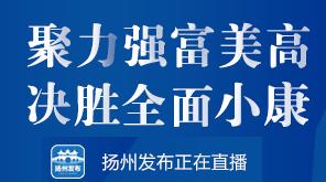 """""""聚力强富美高 决胜全面小康""""系列融媒体新闻发布会高邮市专场"""