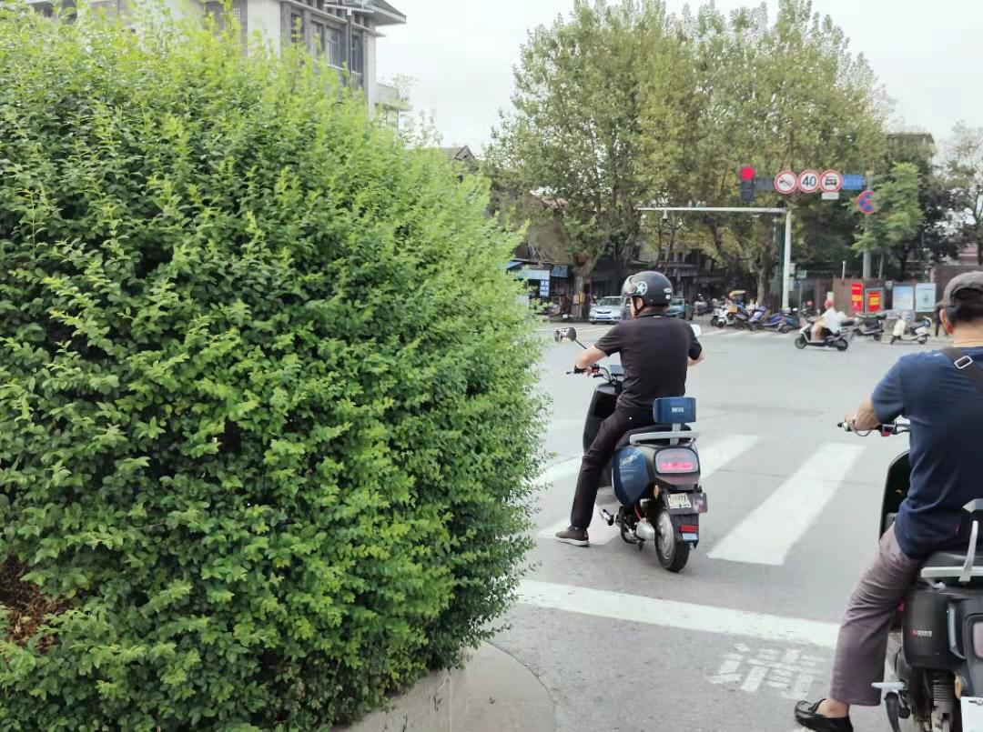 渡江桥北侧下桥处球形灌木遮挡拐弯视线