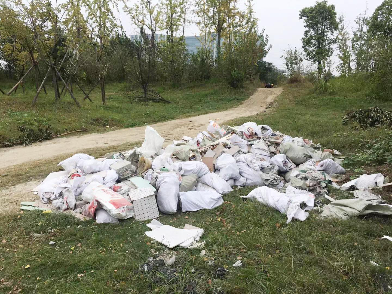 杨柳青公园旁被倒大堆垃圾