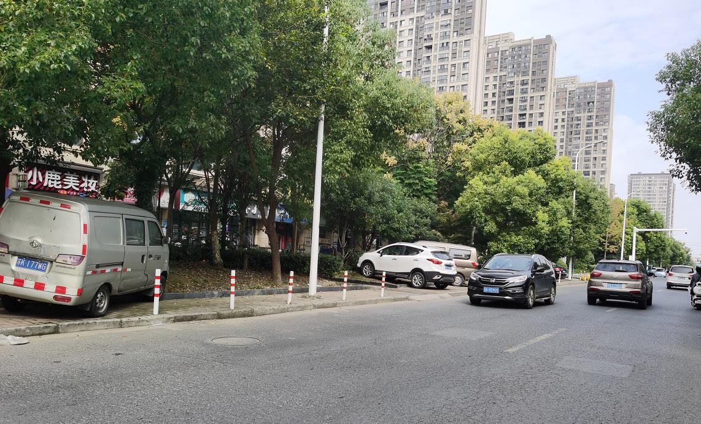违停车轧坏古津路绿化带施桥镇将安排人员加强管理